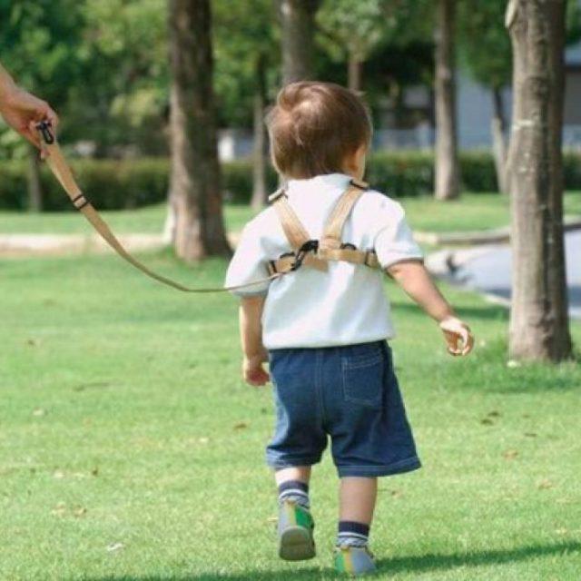 幼児用リード ネットの反応