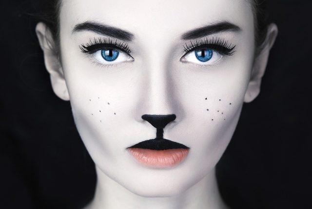 おすすめ猫用もふもふマスクが人気すぎる件~売り切れ続出の理由とは~