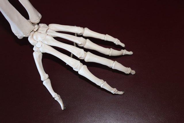 【ラグビー日本代表】骨折で強くなるって本当!?五郎丸歩選手も経験した顔面骨折がヤバい