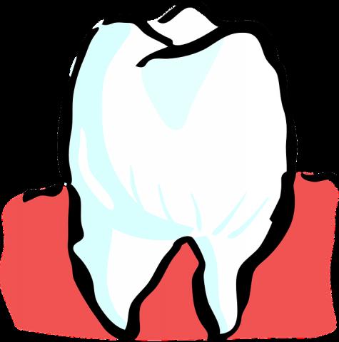 おすすめホワイトニングが危険!?歯を白くする歯磨き粉3つの罠にかかった実話が怖い…