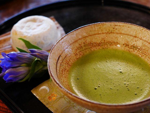 インフルエンザ 緑茶