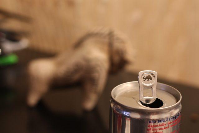 【危険】レッドブルを飲み過ぎた末路がやばいことに