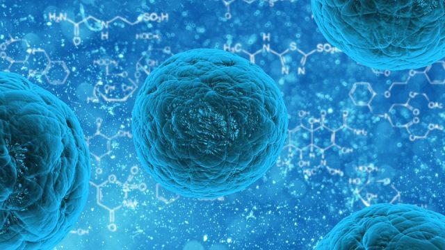 たった1日で治療できる抗インフルエンザ薬!加工肉の発がん性と製薬会社取り組みとの関係性とは
