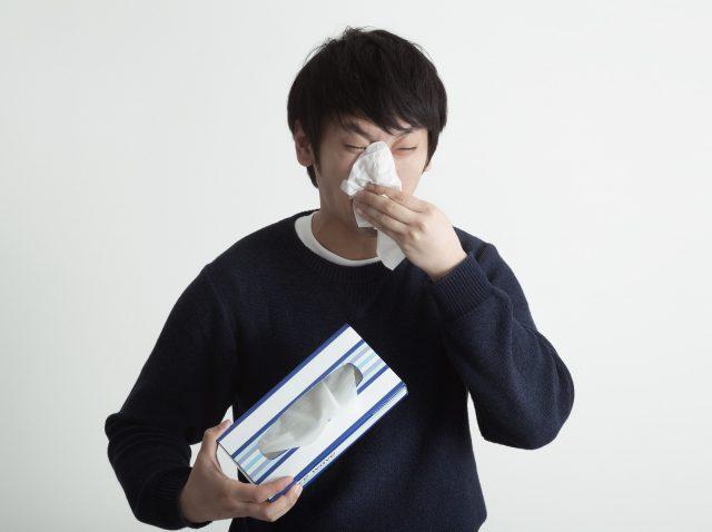 花粉症でお腹に湿疹!?原因・症状・対策・治療方法を一挙に解説!