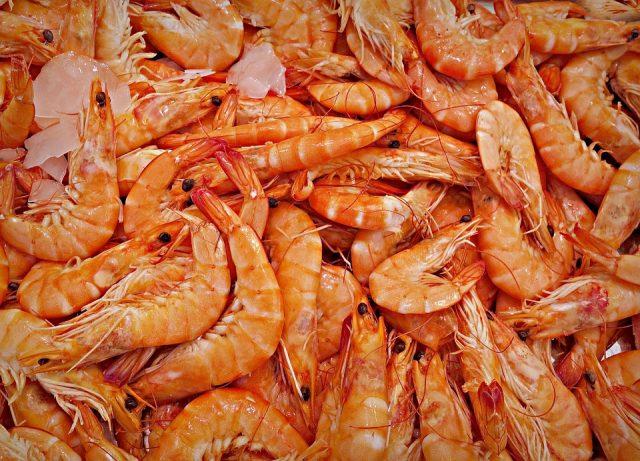 shrimp-1523135_960_720