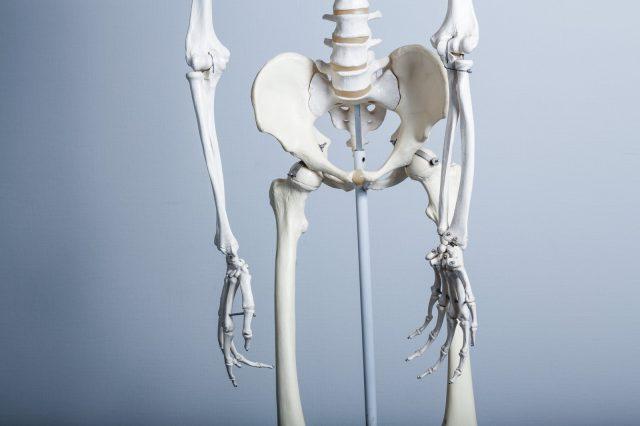 高齢出産 腰椎骨折 原因